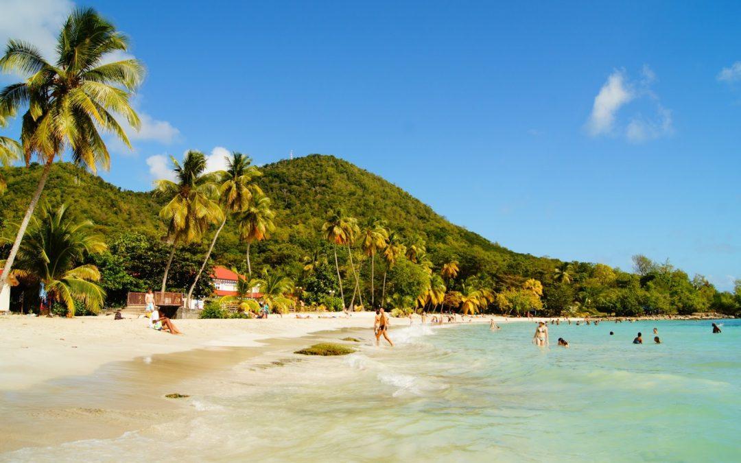 Découvrir la Martinique en voiture : les spots à ne pas manquer !