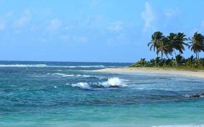 Pourquoi préférer la Guadeloupe pour vos prochaines vacances?